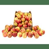 Hollandse Elstar nieuwe oogst