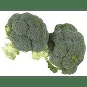 Bio+ Biologische broccoli