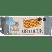 Bio Today Crispy cracker salted