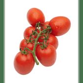 Hollandse Pomodori trostomaten