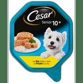 Cesar Hondenvoer senior kip-rijst gelei 10+ jaar