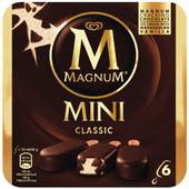 Ola Magnum mini classic 6 stuks