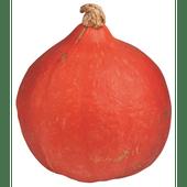 Bio+ Oranje pompoen