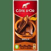 Côte d'Or Bonbonbloc melk-praline-caramel