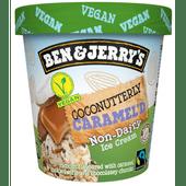 Ben & Jerry's Coconutterly caramel non diary