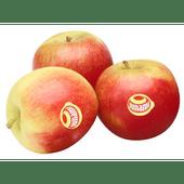 Hollandse Junami appelen