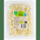 1 de Beste Biologisch Bio alfalfa
