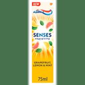 Aquafresh Tandpasta senses grapefruit