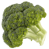 Hollandse broccoli
