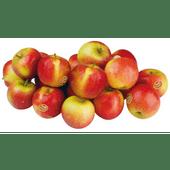 Nieuwe oogst Junami appels