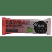 RAW Organic Food Proteine bar appel&kaneel