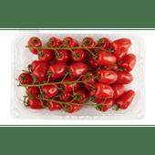 Mini san marzano tomaten schaal