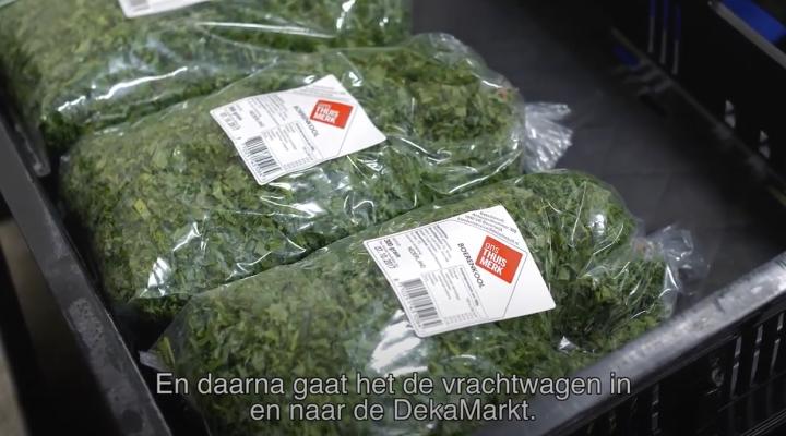 WS_720x400_boerenkool_video