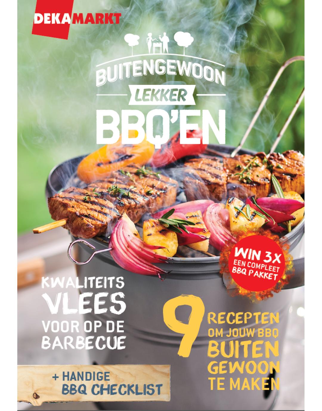 Mini BBQ magazine
