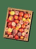 Perziken, nectarines of wilde perziken