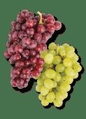 Zoete rode of witte druiven