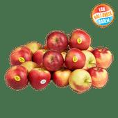 Hollandse Elstar of Jonagold appelen