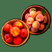 Perziken of nectarines