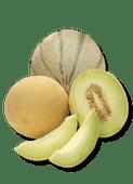 Galia of Cantaloupe meloen